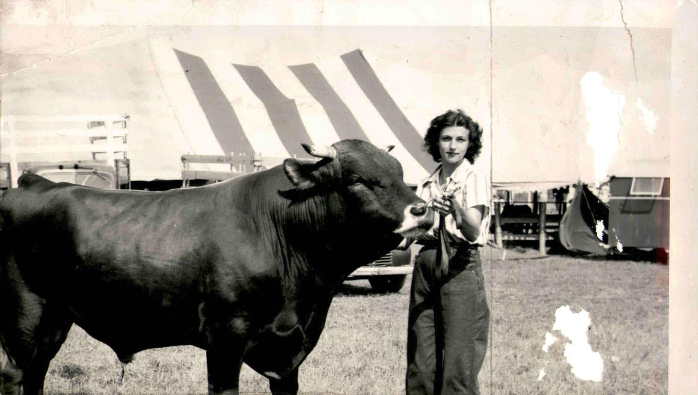 Woman with Bull at Fair, c. 1970s