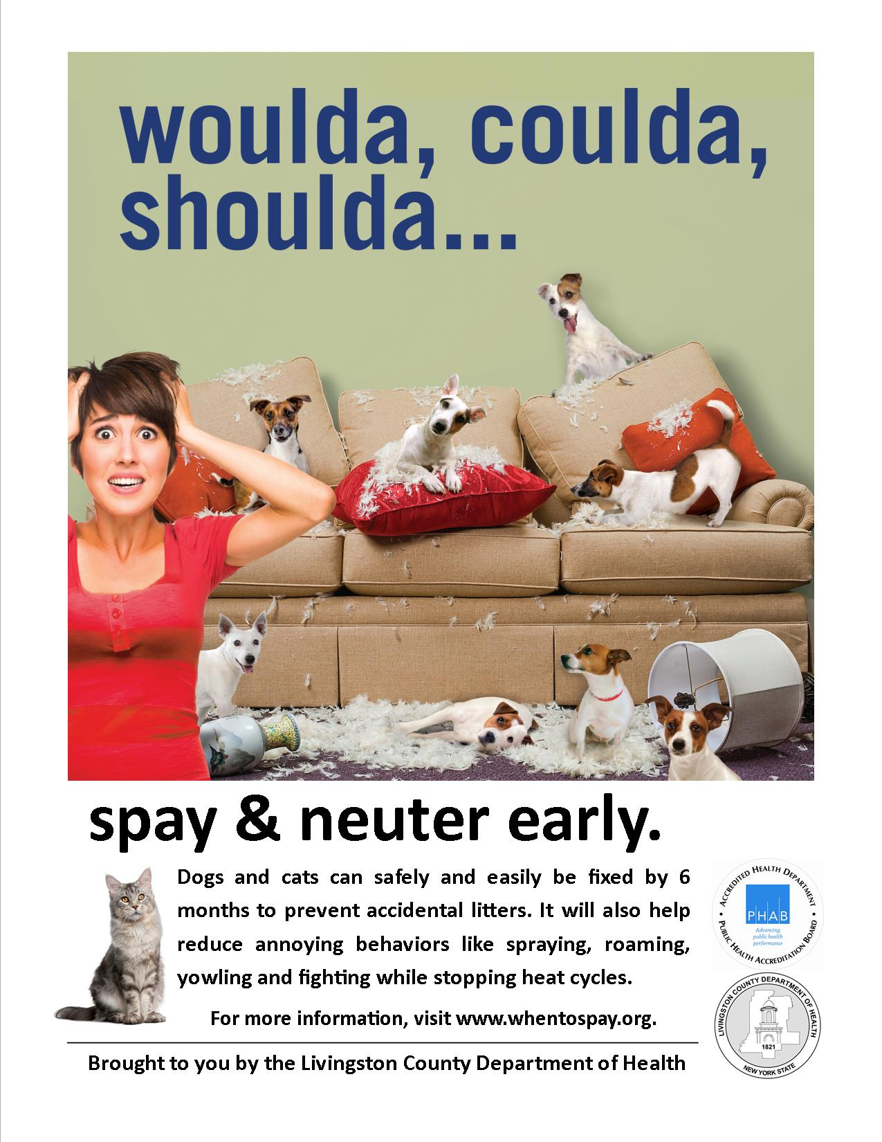 spay or neuter your pets campaign flyer