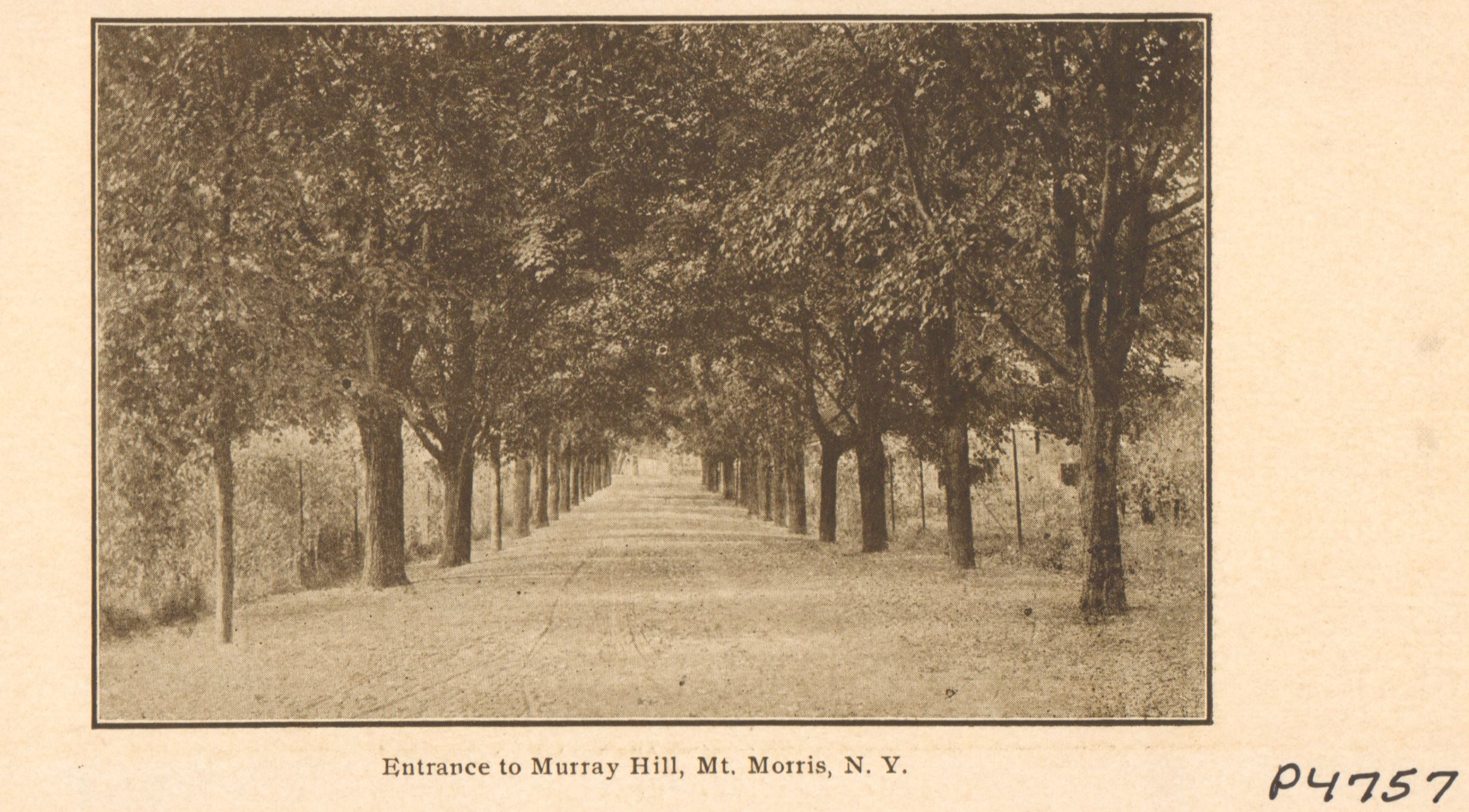 Image of driveway entrance to Murray Hill