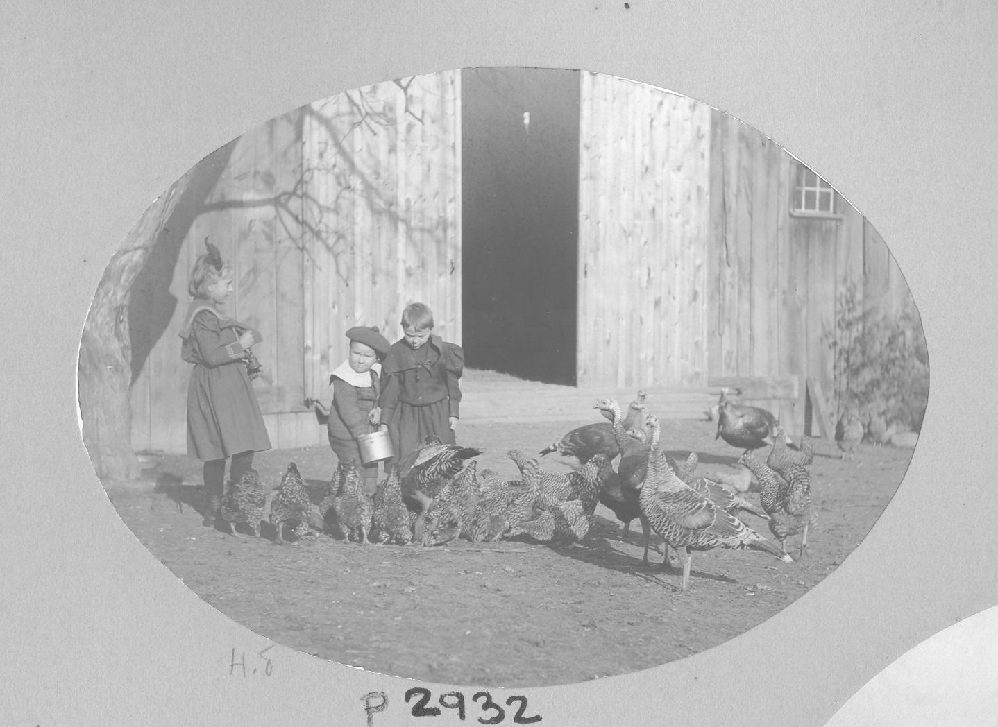 Image of children feeding chickens and turkeys at Craig Colony